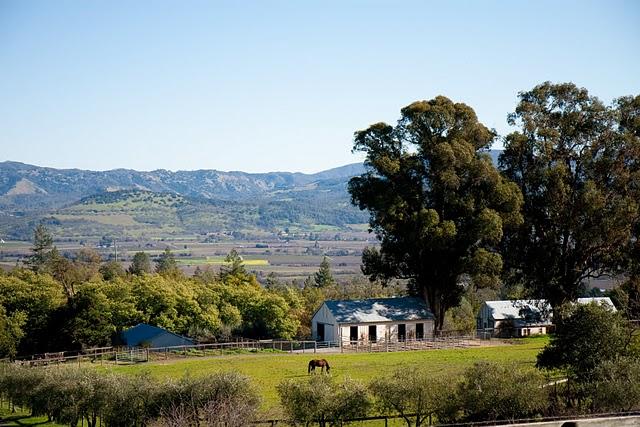 Long meadow ranch winery